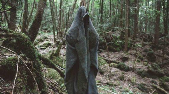 5 Fakta tentang Hutan Aokigahara, Tempat B$#%h D&r# di Jepang